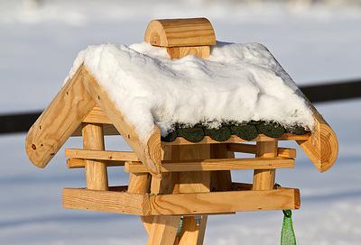 das lieben die kids v gel f ttern im winter. Black Bedroom Furniture Sets. Home Design Ideas